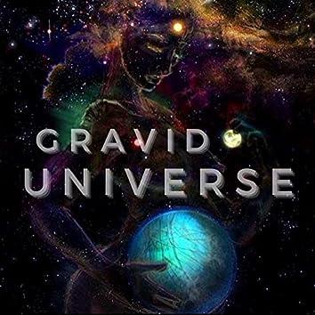 Gravid Universe