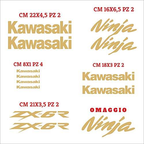 Aufkleber-Set Kawasaki Ninja einzeln zugeschnitten, kompatibel mit Aufkleber-Set zur Personalisierung der Farbe Gold