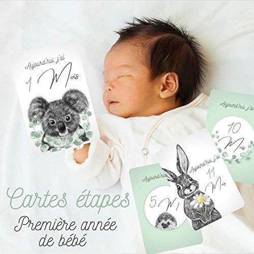 12 Cartes étapes - La première année de bébé - Thème Dessin Animaux Bleu Vert