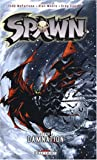 Spawn, Tome 4 - Damnation