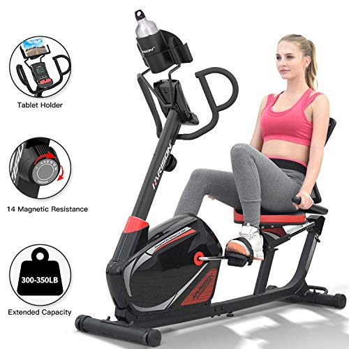 HARISON Recumbent Exercise Bike Stationary with 14 Level Magnetic Resistance, Tablet Holder, RPM, Wide Seat, and Pulse Rate Monitoring…