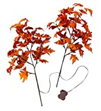 "Plow & Hearth Indoor/Outdoor Lighted Fall Maple Leaves Tree Branches, Flexible, Bendable and Posable, Battery Operated with 40 Warm White LED Lights, Set of 2, 30"" L"