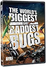 World's Biggest & Baddest Bugs