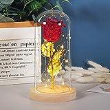 ZSW 24k Oro Rosa Belleza y la Bestia día de San Valentín Presente Flor eterna Rosa en Frasco con luz Nocturna para Boda Regalo de Madre