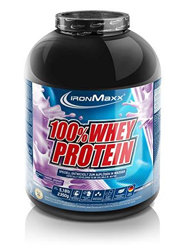 IronMaxx 100% Whey Protein – Whey Proteinpulver für Eiweißshake – Wasserlösliches Eiweißpulver mit Cassis-Joghurt Geschmack – 1 x 2,35 kg Dose
