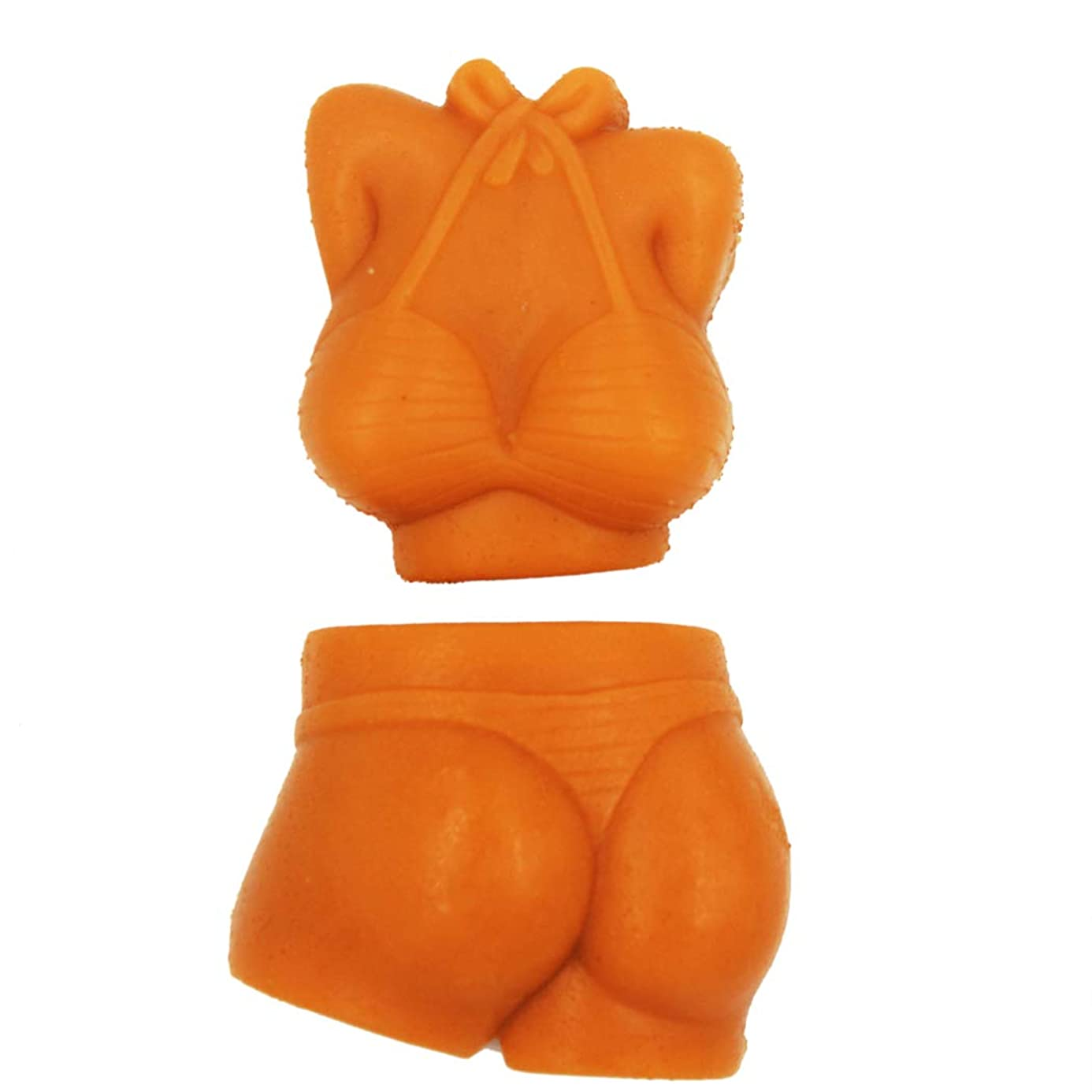 Longzang Soap Molds Sexy Bikini Set of 2 Craft Art Silicone Soap Mold Craft Molds DIY Handmade soap molds (S143-S144) nwy0554545