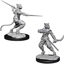 Amazon Com Tabaxi Miniatures In a pilot program, li juan and her colleagues, led by professor lu zhi, started working helping the monks help the cats. amazon com tabaxi miniatures