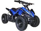 Mars Outdoor Kids Children 24V Blue Mini Quad ATV Dirt Motor Bike Electric Battery Powered