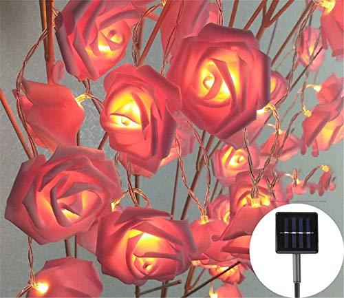 SILOLA Guirlandes Solaires, Guirlandes Simulation Rose LED Light, 5M 20 LED, PE Rose, Guirlandes Imperméables, Jardin Extérieur, Patio, Balcon, (Blanc Chaud) Idéal pour DIY