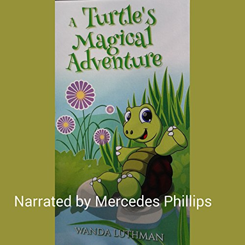 A Turtle's Magical Adventure cover art