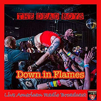 Down in Flames (Live)