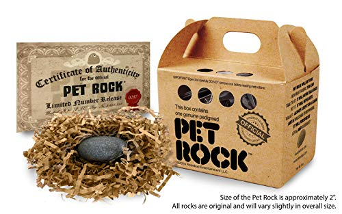 Pet Rock…Authentic and Approved by The Original Creator Gary Dahl