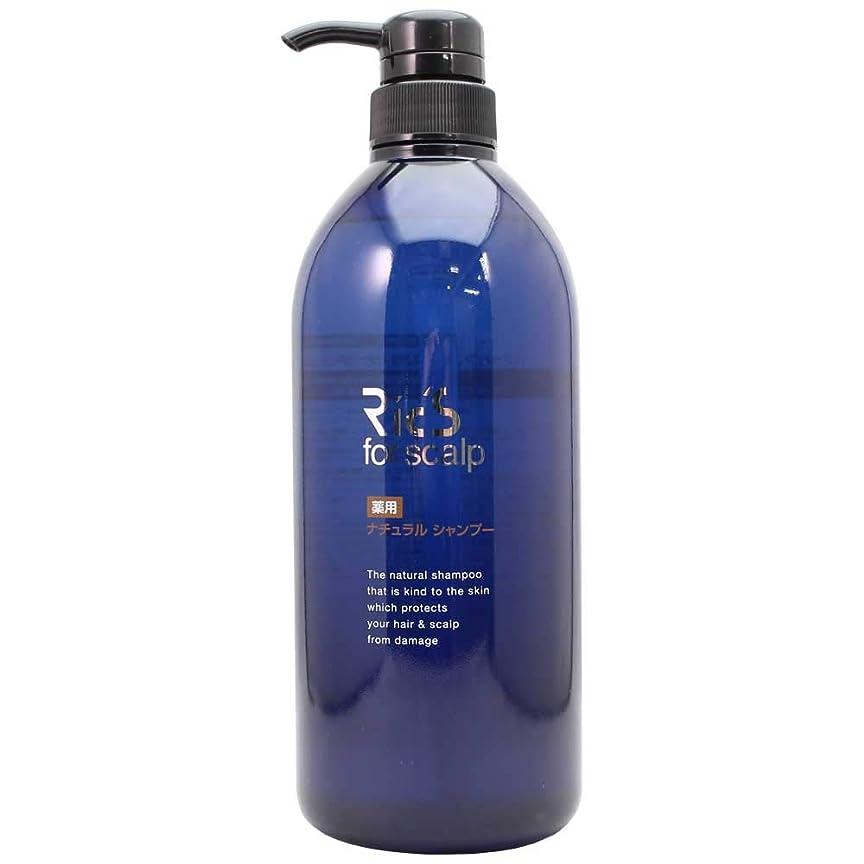 教養があるドレイン浸透する日本ケミコス リックス 薬用 ナチュラル シャンプー (800ml)