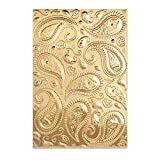 Sizzix 3-D Textured Impressions Embossing Folder Paisley by Georgie Evans, 664796, Multicolor