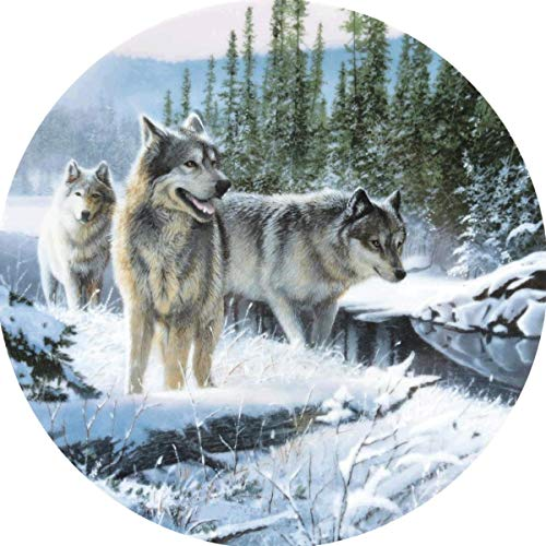 in budget affordable DIY 5D Diamond Painting, Diamond Embroidery Snow Wolf Cross Stitch Kit Art Art Paint …