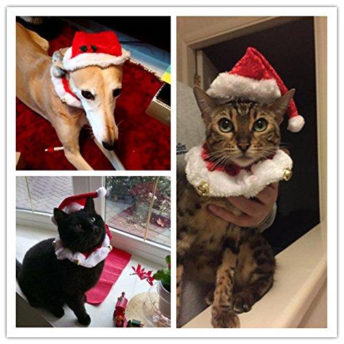 Kungfu Mall 2pcs noël chien chat chapeau de Santa collier avec cloche de Noël Costume set