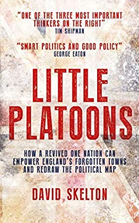 Little Platoons: How a revived One Nation can empower England's forgotten towns and redraw the political map (English Edition)