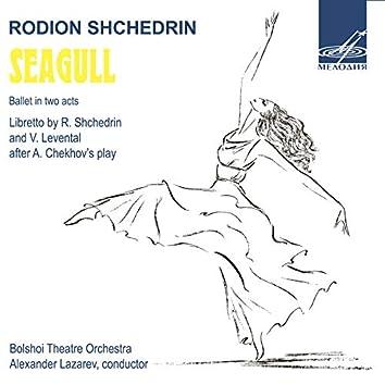 Shchedrin: The Seagull