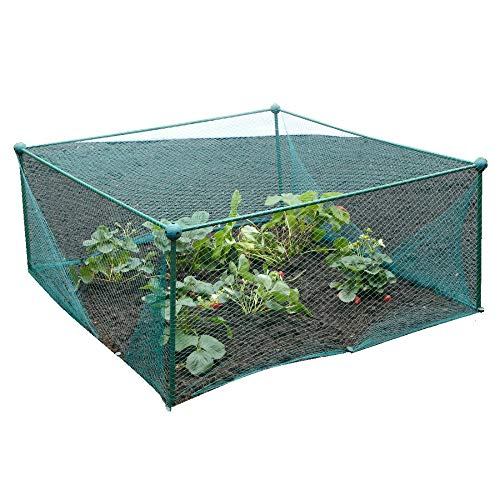 GardenSkill Pop Up Fruit Cage and Grow-House 1m x 1m x 1.85m high, Green Vegetable Plant Crop Protection Bird Net Cover Cloche