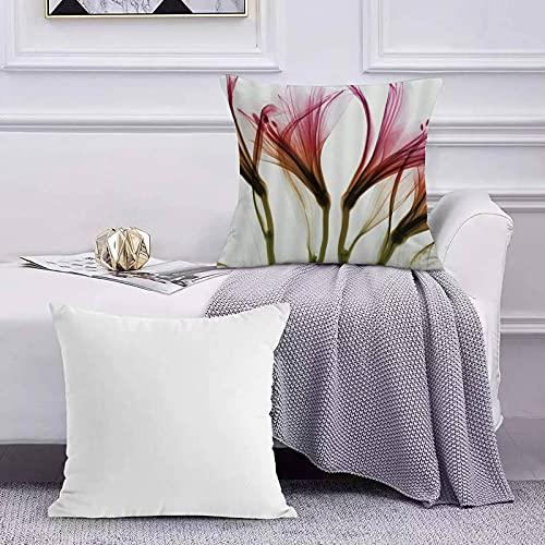 Funda de Cojín Funda de Almohada del Hogar Blush Flor Flores Transparentes Primavera Floral Sofá Throw Cojín Almohada Caso de la Cubierta para 45x45cm