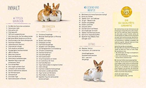 Kaninchen im Außengehege: Pures Frischluft-Vergnügen - 3