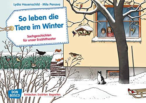 So leben die Tiere im Winter. Kamishibai Bildkartenset.: Entdecken - Erzählen - Begreifen: Sachgeschichten (Sachgeschichten für unser Erzähltheater)