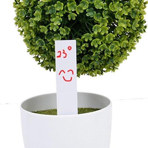 FLAMEER 100Pcs Marqueurs Etiquettes Plante de Pépinière Carte Tag Jardin 10 * 2cm - Blanc