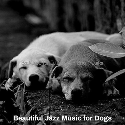 Beautiful Jazz Music for Dogs