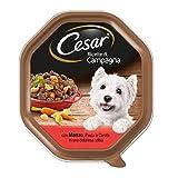 Cesar Ricette di Campagna con Manzo, Pasta e Carote in Una Deliziosa Salsa, Cibo per Cane - 14 Vaschette