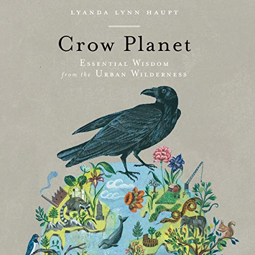 Crow Planet cover art