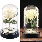 Lunartec Flor: Noble Rosa Artificial con iluminación LED en una cúpula de Cristal Real, Blanco (Rosa Artificial)