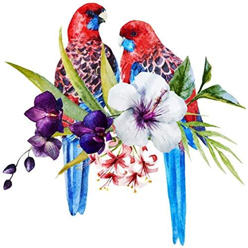 shuodade Pintura por números para Flores Adultas y pájaros Red Parrot Lienzo...