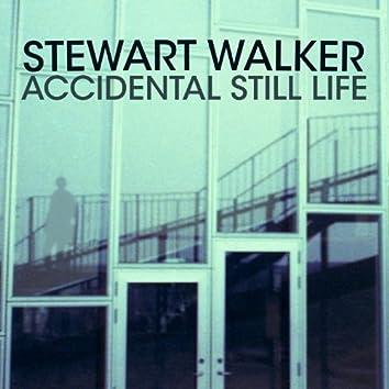 Accidental Still Life