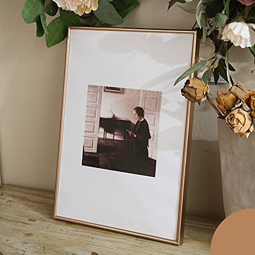 LZYMLG Marco de pared de metal de 38 x 53 cm para impresión, marco de fotos de aluminio con plexiglás (rosa, paquete de 1)