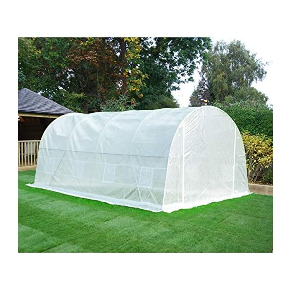 MELLCOM 20' x 10' x 7' Greenhouse Large Gardening Plant Hot House Portable Walking in Tunnel Tent, White 5 【8 ROLL-UP SIDE WINDOWS】-The green house eight roll-up windows have mesh netting to allow for cross ventilation and climate control. 【HEAVY DUTY STEEL FRAME】-Walk-in Garden Greenhouse solid steel construction with a galvanized finish, which is resistant to rust, chipping, and peeling. 【TRANSPARENT PLASTIC COVER】-The tough, durable and transparent PE plastic cover protects plants while allowing nourishing sunlight to pass through. The cover can be easily attached to the frame with the included tethers and single-sided tape.
