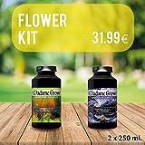 MADAME GROW Flower DUOPACK - 2 x 250 ML - Économisez Maintenant et Obtenez ce Kit DE Bloom et d'engraissement pour la Marijuana...
