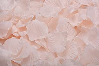 ocharzy 1000pcs Silk Rose Petals Wedding Flower Decoration (Champagne)