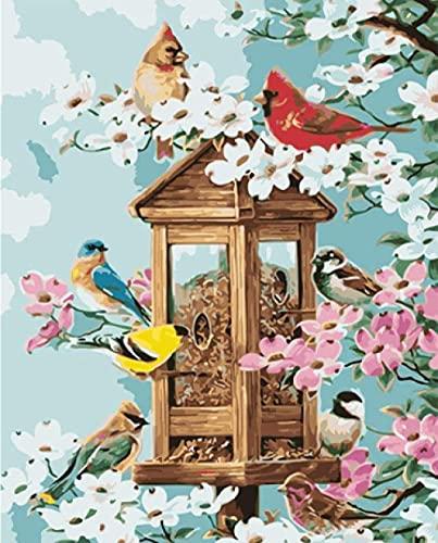 shuodade Pintura por números Birdhouse Digital Malet para niños para niños Principiante Color acrílico Lienzo Decoración del hogar 40 x 50 cm