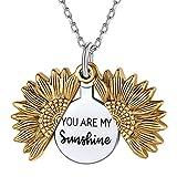 Nofade Silver Collier Argent Femme Médaillon de Tournesol Gravé « You are My Sunshine » Pendentif OuvertPlaqué Or pour Femme et Fille avec Coffret Cadeau