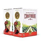 Bag in box Vino Blanco del Bodeguero de Arróniz en Campinbar de Cartón (Pack 2 Cajas de 5 Litros)