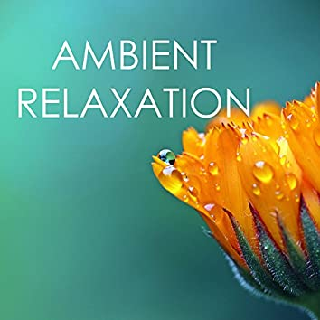 Ambient Relaxation - Nature Sounds and Music, Biosphere & Spa Songs Collection