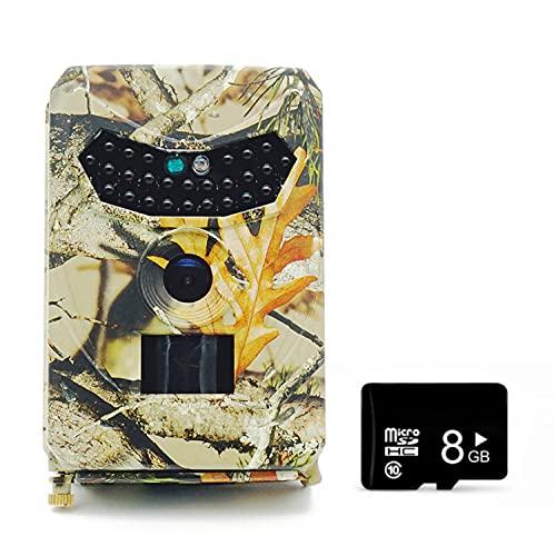 Walmeck Cámara infrarroja de visión Nocturna con cámara Impermeable Digital 1080P 12MP para monitoreo de Granja de Vida Silvestre