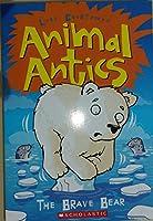 The Brave Bear (Animal Antics) 0545474396 Book Cover
