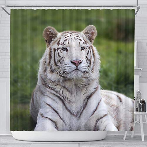White Bengal Tiger Print Shower Curtains
