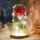 Beauty and The Beast Rose, Eternal Fake Flowers Enchanted Rose in Glass Dome with LED Light Strip, Romantic Home Decor Gifts for Valentine's Day Mother's Day Wedding Anniversary (Red)
