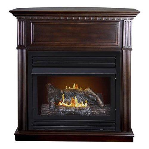 Propane Gas Fireplaces Amazon Com