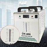 Enfriador de agua industrial CW-3000 9L de agua refrigerador tipo Water Chiller refrigeración de agua CO2 Laser refrigerador para grabado