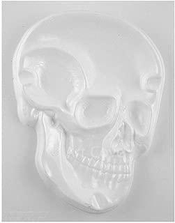 Skull Plaster Mold 5-1/2 x 7-1/2 Inch
