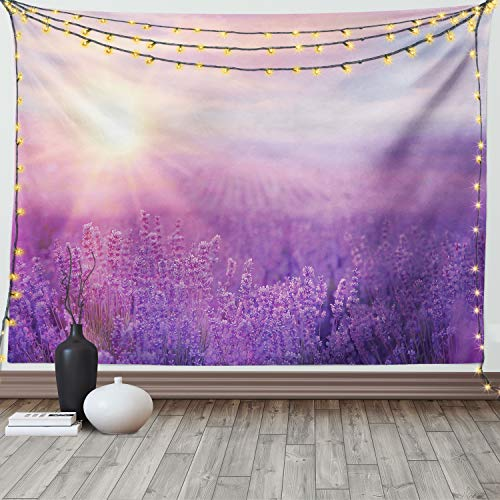 Ambesonne Nature Tapestry, Sunset Horizon Over Lavender Field in French Provence Floral Rural Picture Image Print, Wide Wall Hanging for Bedroom Living Room Dorm, 60' X 40', Violet