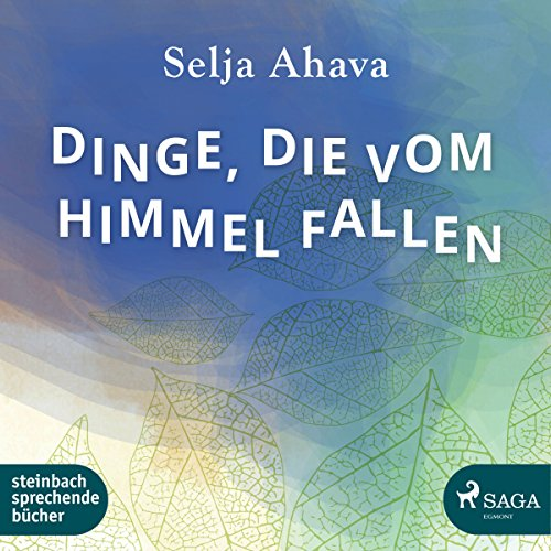 Dinge, die vom Himmel fallen audiobook cover art
